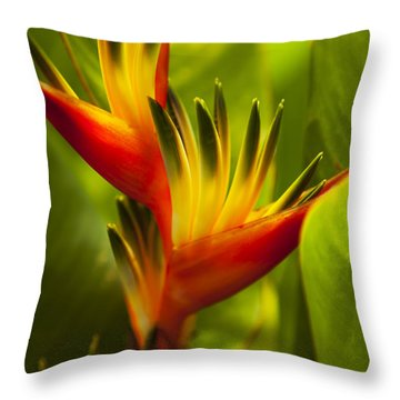 Heliconia Throw Pillow by Dana Edmunds - Printscapes