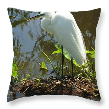 Hiding Place Throw Pillow by Carolyn Marshall