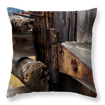 Hinged 3 Throw Pillow by Fran Riley