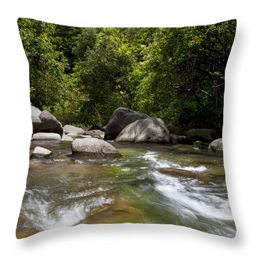 Iao River Throw Pillow by Jenna Szerlag