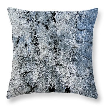 Iced Throw Pillow