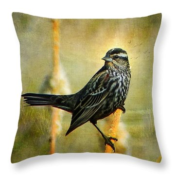 Throw Pillow featuring the photograph In The Limelight by Blair Wainman