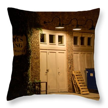 Into The Night Throw Pillow by Jim Finch