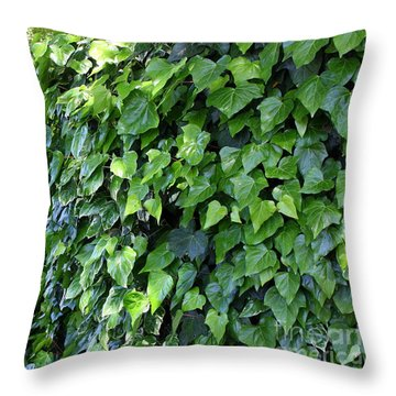 Ivy Wall Throw Pillow by Carol Groenen