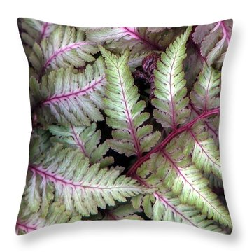 Japanese Painted Fern Throw Pillow