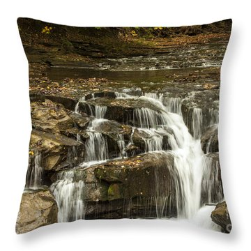 Java Falls In Autumn Throw Pillow by Darleen Stry