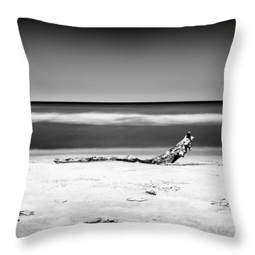 Lake Huron Throw Pillow by Tanya Harrison