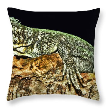 Let Me Strike A Pose Throw Pillow by Lourry Legarde
