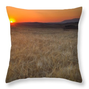 Light Fields Throw Pillow by Guido Montanes Castillo