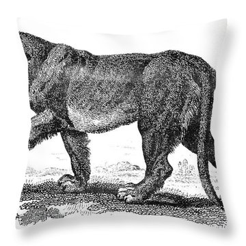 Lion Throw Pillow by Granger