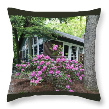 Little Brown Church In Spring Throw Pillow