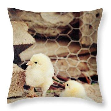 Little Explorers Throw Pillow by Stephanie Frey
