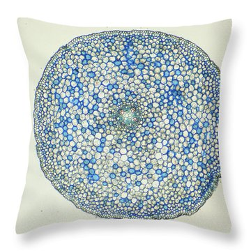 Lm Of Ranunculus Stem Throw Pillow by M. I. Walker
