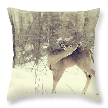 Looking Back Throw Pillow by Karol Livote