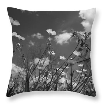 Looking Up  Throw Pillow by Betsy Knapp