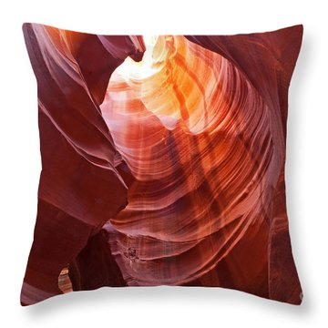 Looking Up Throw Pillow by Bob and Nancy Kendrick