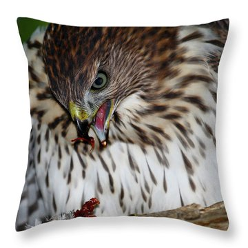 Lunchtime Throw Pillow by Paul Marto