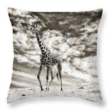 Male Giraffe Throw Pillow