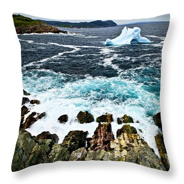 Melting Iceberg Throw Pillow by Elena Elisseeva