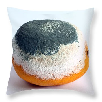 Moldy Orange Throw Pillow by Photo Researchers, Inc.