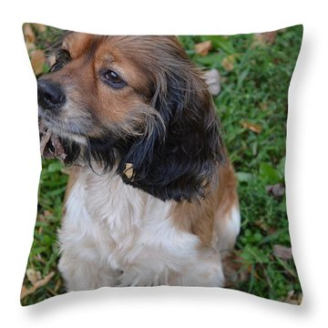 My Little Bear Throw Pillow by Debbie Portwood