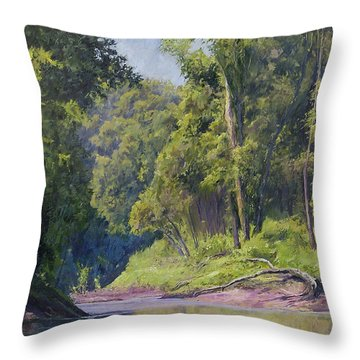 Near The River At Friars Point Throw Pillow