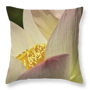 Nelumbo 'pink And Yellow' Throw Pillow by Perla Copernik
