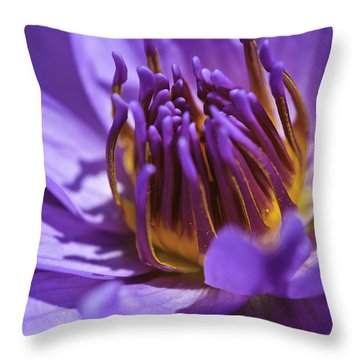 Nymphaea 'panama Pacific' Throw Pillow by Perla Copernik