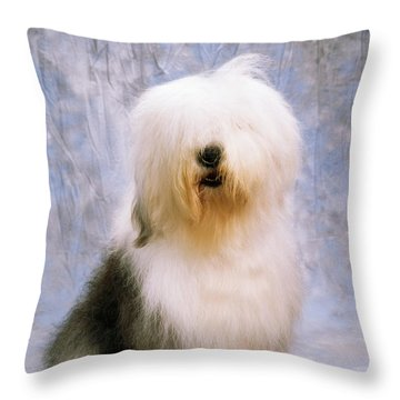 Old English Sheepdog Throw Pillow by The Irish Image Collection