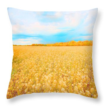 On A Clear Day Throw Pillow by Bonnie Bruno