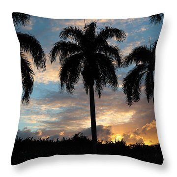 Throw Pillow featuring the photograph Palm Tree Silhouette by Karen Lee Ensley