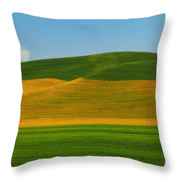 Palouse Panorama Throw Pillow by Winston Rockwell