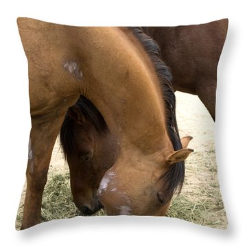 Throw Pillow featuring the photograph Parallel Ponies by Lorraine Devon Wilke