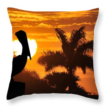 Pelican At Sunset Throw Pillow by Dan Friend