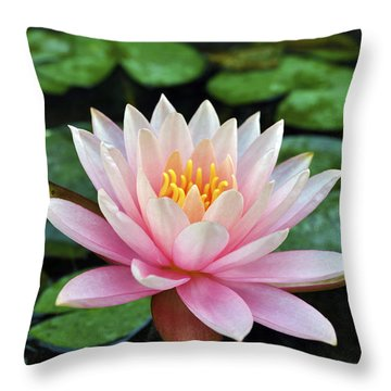 Pink Lotus Throw Pillow by Sumit Mehndiratta