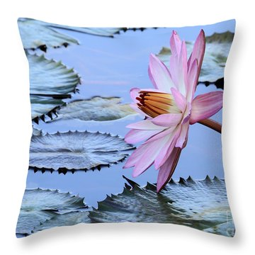 Pink Water Lily Throw Pillow by Sabrina L Ryan