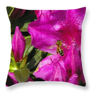 Throw Pillow featuring the photograph Pollinating  by Brian Wright