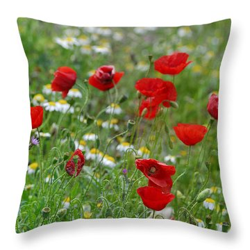 Poppies Throw Pillow by Guido Montanes Castillo