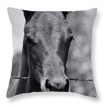 Pretty Girl Throw Pillow by Juls Adams