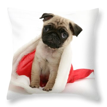 Pug Puppy Throw Pillow by Jane Burton