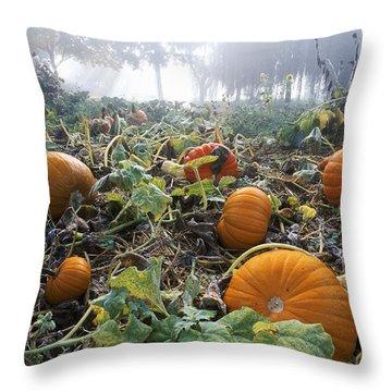 Pumpkin Patch, British Columbia Throw Pillow by David Nunuk