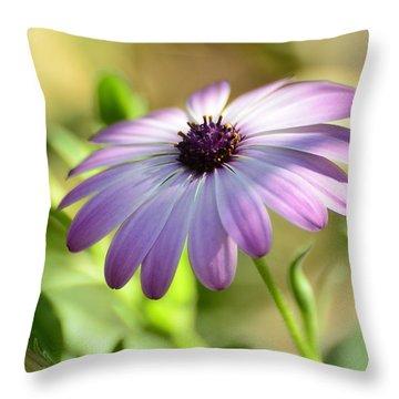 Purple Daisy  Throw Pillow by Saija  Lehtonen