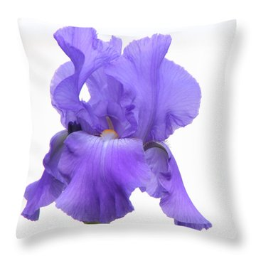 Purple Iris On White Throw Pillow