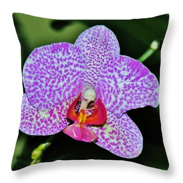 Throw Pillow featuring the photograph Purple Orchid by Sherman Perry