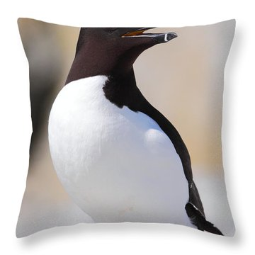 Razorbill Throw Pillow