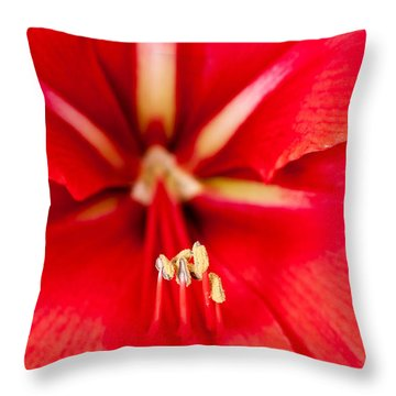 Throw Pillow featuring the photograph Red Amaryliss by Les Palenik