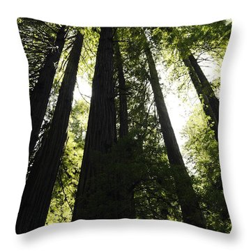 Red Woods Throw Pillow by Paul Plaine