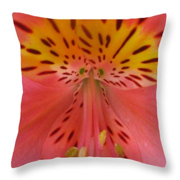 Throw Pillow featuring the photograph Retrieving by Tina Marie