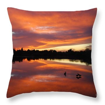 Throw Pillow featuring the photograph Riparian Sunset by Tam Ryan