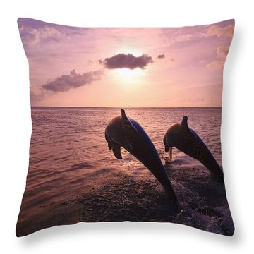 Roatan, Bay Islands, Honduras Two Throw Pillow by Stuart Westmorland